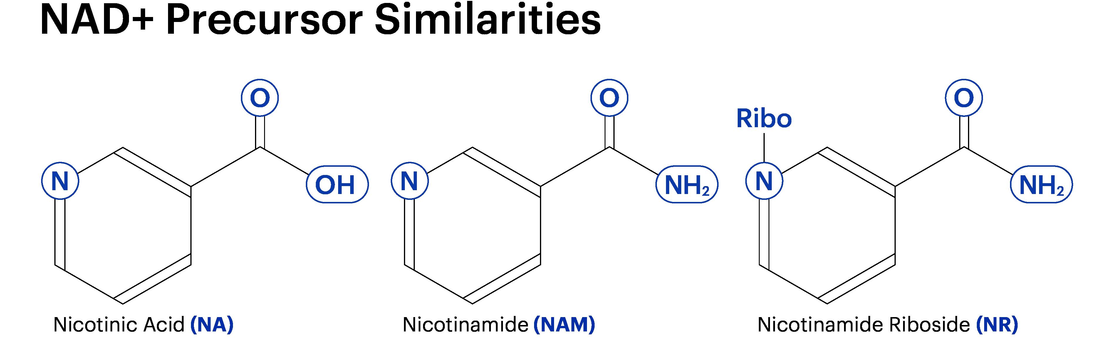 Mmn Celldiagrams