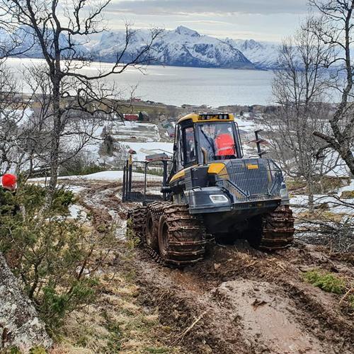 Vellykket skogdag i Sortland