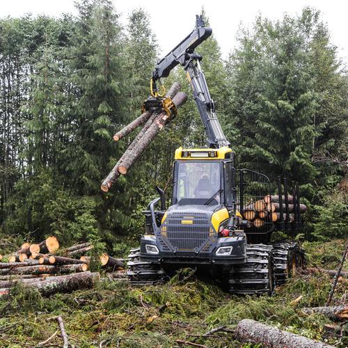 Midlertidig forskrift for å opprettholde hogstaktivitet i skogbruket