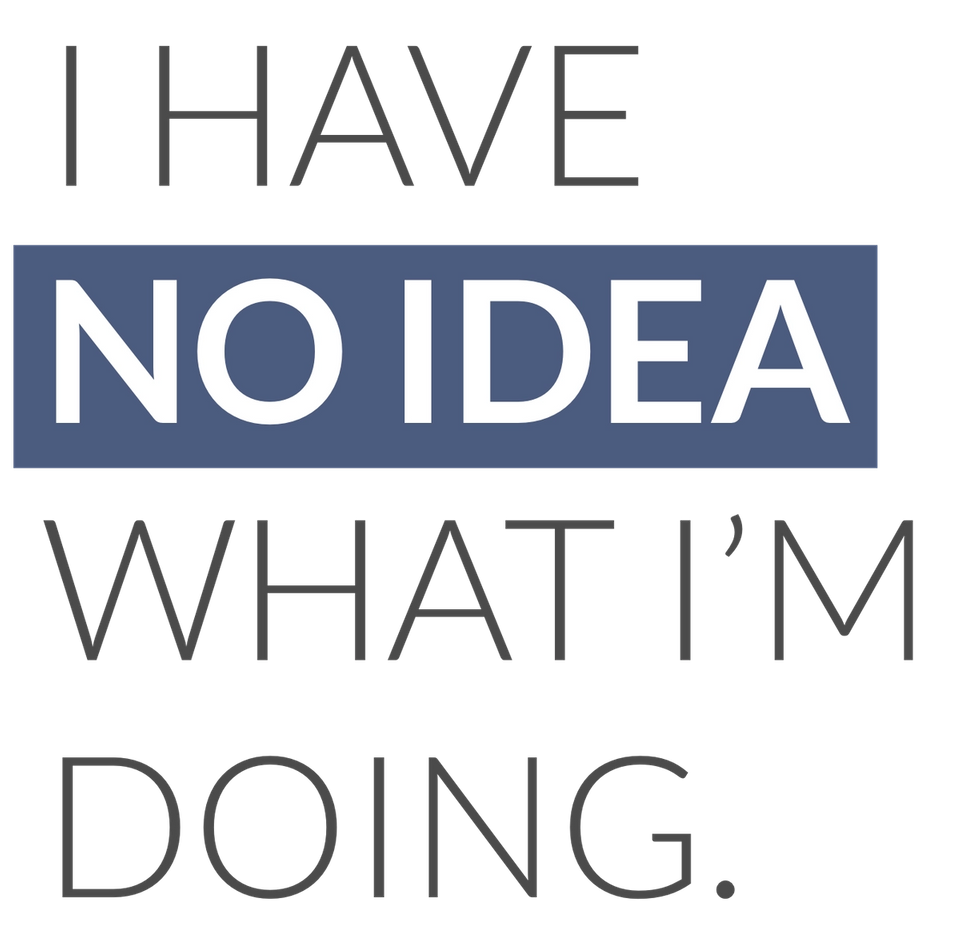 "The, ""I have no idea what I'm doing"" Logo"