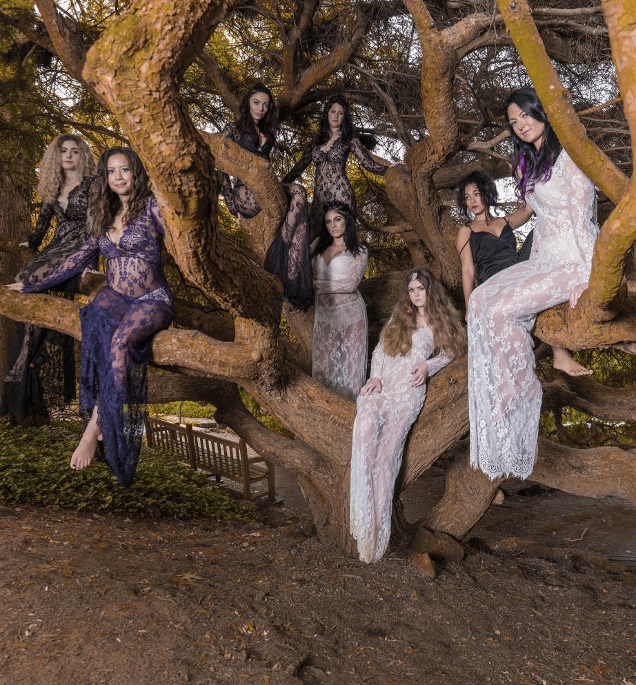 Many women sitting in a tree