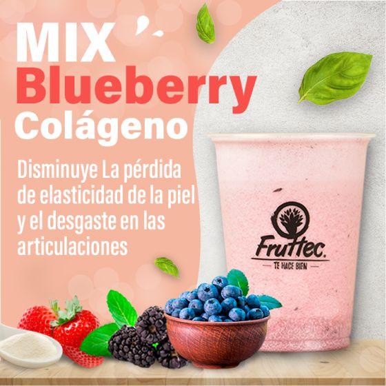 Blueberry Colágeno